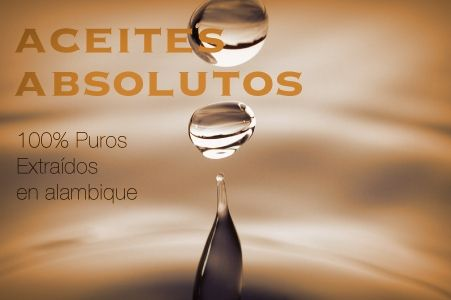 AROMATERAPIA__ACEITES_ABSOLUTOS Productos