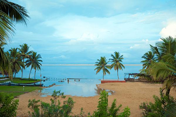 14 Viajes a India