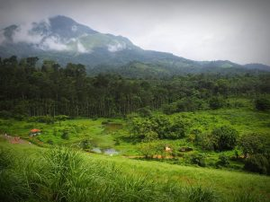 14022097_10209838420668410_6414371284685119184_n-300x225 viajar a Kerala