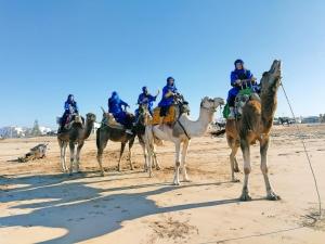 WhatsApp-Image-2021-03-30-at-12.27.19-300x225 Viaje a Marruecos Kainis